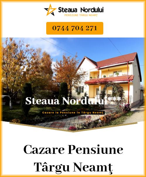 cazare la pensiune in Targu Neamt